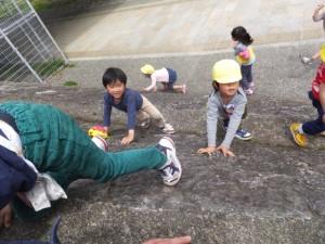 賀茂川お散歩 (26)