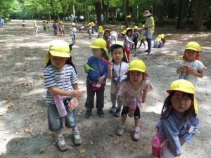 神社お散歩 (5)