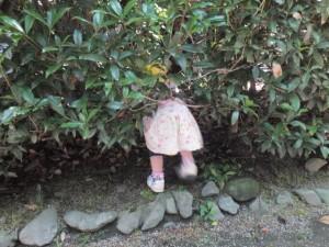 神社お散歩 (19)