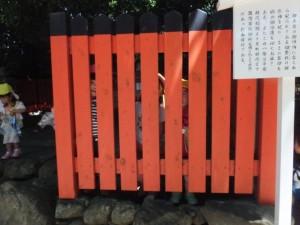 神社お散歩 (6)