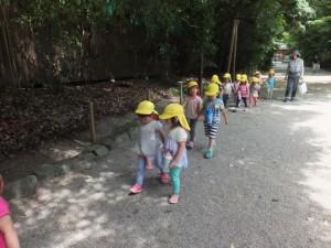神社お散歩 (18)