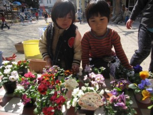 お花植え (6)