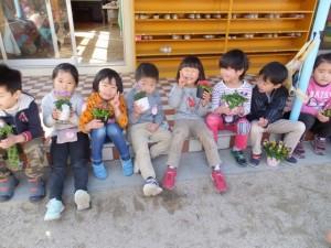 お花植え (8)