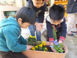 お花植え (13)