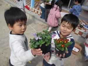 お花植え (5)