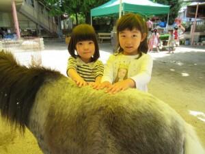 移動動物園 (35)