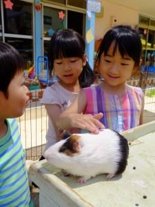 移動動物園 (47)