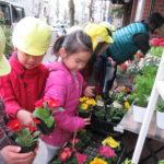 ひかり組 お花 お買物・苗植え 2019年2月15日(金)