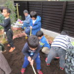 花壇作り 2月14日(木)