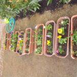 ことり組 クッキング・お花植え 2月28日・3月1日