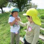 ことり組 賀茂川お散歩 4月18日(木)