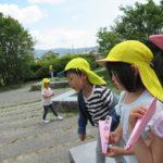 ことり組 ラディッシュ栽培&賀茂川お散歩