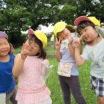 ひかり組・ことり組 賀茂川おさんぽ 6月14日(金)