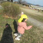 ひよこ組 賀茂川お散歩 1月14日(火)