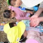 ひよこ組 お散歩 下鴨神社 5月12日(水)
