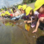 植物園お散歩遠足 10月6日(水)
